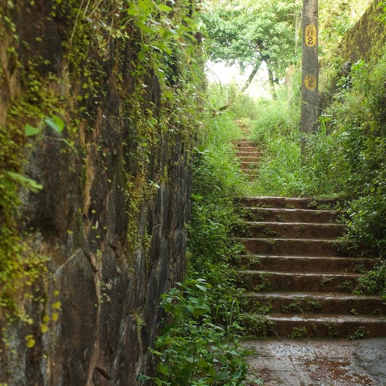 Green Stairways