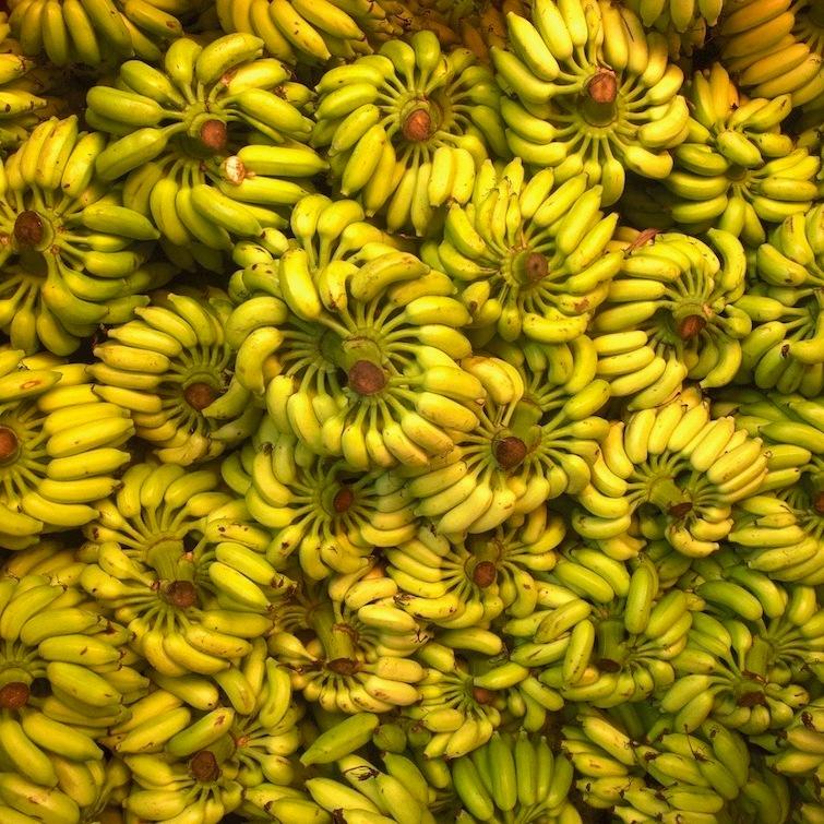 Heaps of bananas