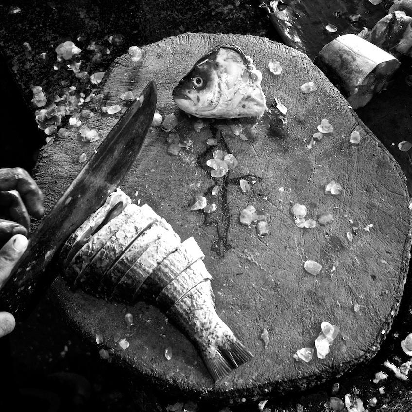 Cut up fish at butcher shop.