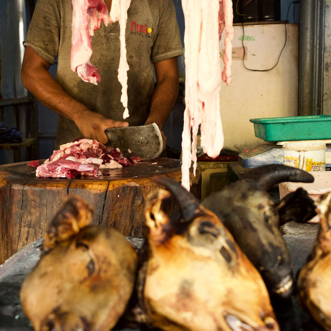 Decapitated goat heads at a butcher-shop.
